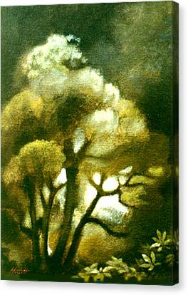 Spirit Of The Tarairi Tree Canvas Print by Patricia Howitt