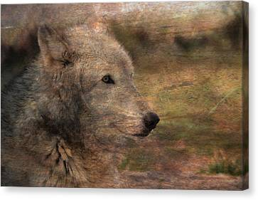 Native American Spirit Portrait Canvas Print - Spirit Of The Wolf by Deena Stoddard