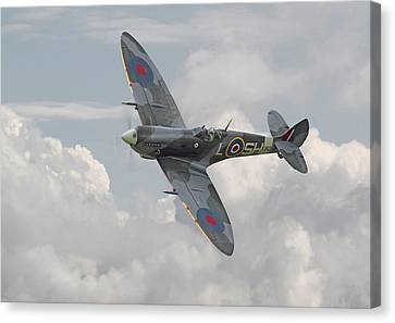 Spitfire - Elegant Icon Canvas Print by Pat Speirs