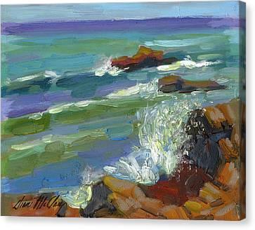 Splash 1 Canvas Print by Diane McClary