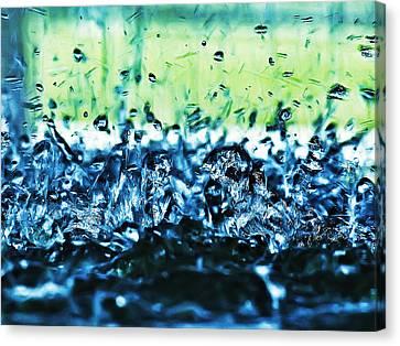 Splash Canvas Print by Camille Lopez