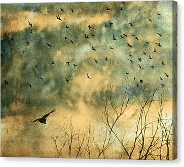 Animal Canvas Print - Splash by Gothicrow Images