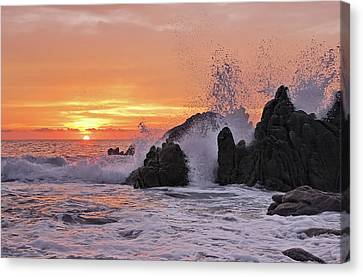 Splash  Canvas Print by Marcia Colelli