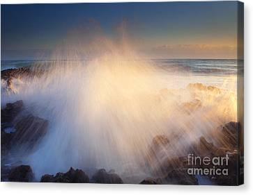 Splash Canvas Print by Mike  Dawson