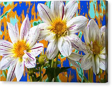 Splash Of Color Canvas Print by Garry Gay