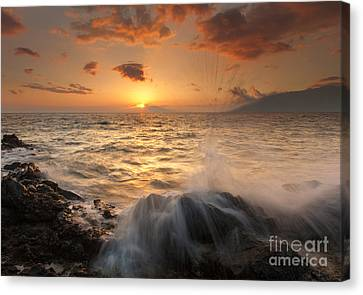 Splash Of Paradise Canvas Print by Mike  Dawson
