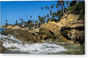 Splash Canvas Print by Tammy Espino
