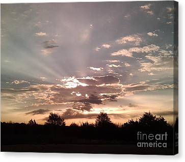 Splendid Rays Canvas Print