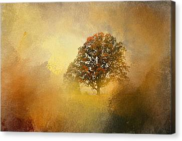 Splendor Canvas Print
