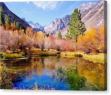 Splendor Of Fall Canvas Print