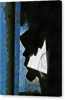 Splintered  Canvas Print by Steve Taylor