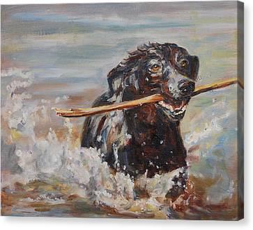 Splish Splash Canvas Print by Carol  DeMumbrum