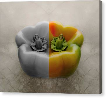 Split Pepper Canvas Print