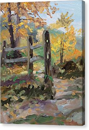 Split Rail Fence Canvas Print by Spencer Meagher