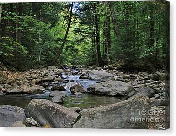 Split Rock Canvas Print by Butch Phillips
