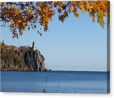 Split Rock Leaves Canvas Print