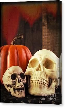 Creepy Canvas Print - Spooky Halloween Skulls by Edward Fielding