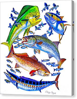 Sportfish Collage Canvas Print by Carey Chen