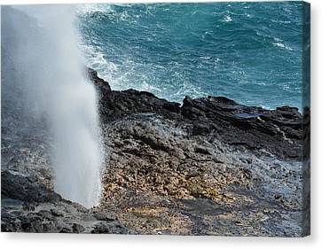 Spouting Horn Canvas Print by P S