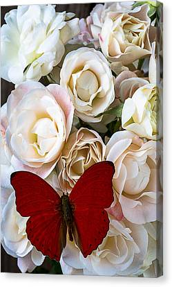 Spray Roses And Red Butterfly Canvas Print by Garry Gay