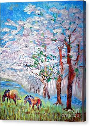 Spring And Horses 2 Canvas Print by Vicky Tarcau