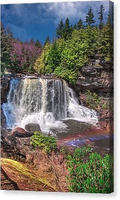 Spring At Blackwater Falls Canvas Print