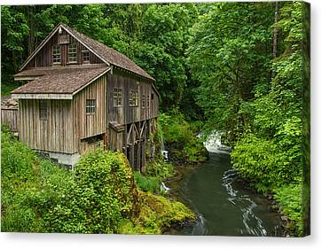Spring At Cedar Creek Grist Mill Canvas Print by Patricia Davidson