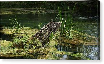 Canvas Print featuring the photograph Spring At Hodgson Mill by Julie Clements