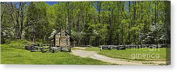 Spring At John Oliver's Place - D005203 Canvas Print by Daniel Dempster