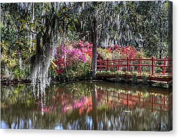Spring At Magnolia Plantation 1 Canvas Print