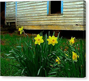 Julie Dant Artography Canvas Print - Spring At The Old Home Place by Julie Dant