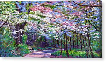 Park Benches Canvas Print - Spring Blossom Pathway by David Lloyd Glover
