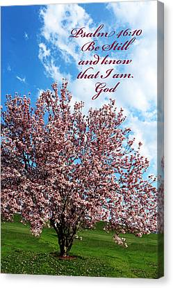 Spring Blossoms With Scripture Canvas Print by Lorna Rogers Photography