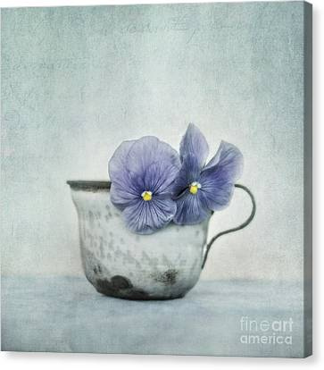 Spring Blues With A Hint Of Yellow Canvas Print by Priska Wettstein