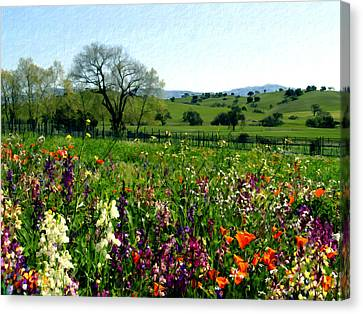 Spring Bouquet At Rusack Vineyards Canvas Print by Kurt Van Wagner