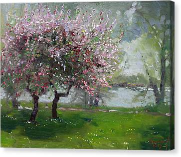 Spring By The River Canvas Print by Ylli Haruni