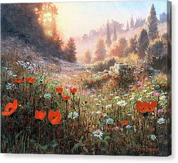 Spring Carpet Mt Carmel Canvas Print by Graham Braddock