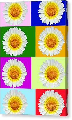 Spring Collage Canvas Print by Kasia Bitner