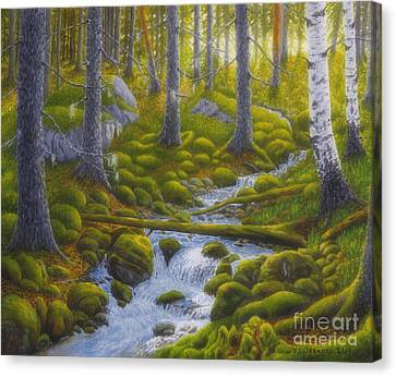 Spring Creek Canvas Print by Veikko Suikkanen