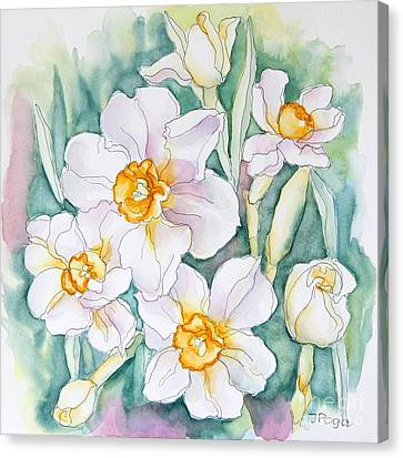 Spring Daffodils Canvas Print by Inese Poga