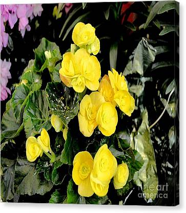 Canvas Print featuring the photograph Spring Delight In Yellow by Luther Fine Art