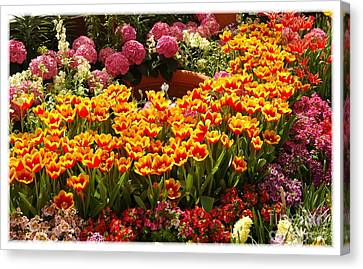 Spring Delight Canvas Print