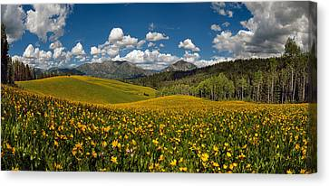 Spring Delight Canvas Print by Leland D Howard