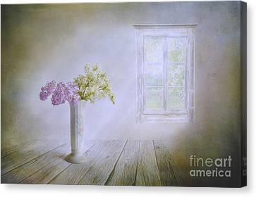 Harmonious Canvas Print - Spring Dream by Veikko Suikkanen