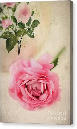 Spring Elegance Canvas Print by Darren Fisher