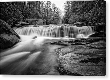 Spring Falls Canvas Print by Brian Young