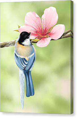 Spring Fever Canvas Print by Veronica Minozzi