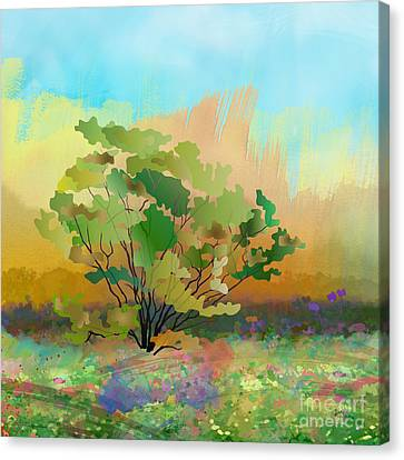 Spring Field Canvas Print by Bedros Awak