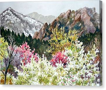 Spring Flatirons Canvas Print by Anne Gifford