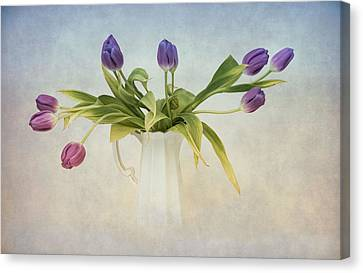 Spring Fling Canvas Print by Robin-Lee Vieira